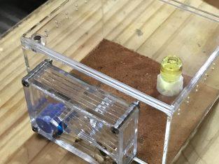 Antfarm Formicarium Mini size